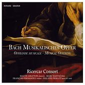 Bach: The Musical Offering, BWV 1079 by Various Artists