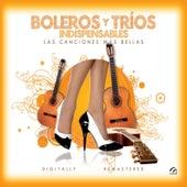 Boleros y Tríos Indispensables: Las Canciones Más Bellas by Various Artists