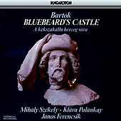 Bartok: Bluebeard's Castle by Mihaly Szekely