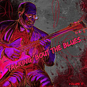 Talking 'Bout the Blues, Vol. 17 by Various Artists