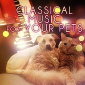 Classical Music for Your Pets – Soothing Music While You Are Out, Relaxing Piano Music for Dogs, Cats & Other Friends, Calming Down Your Pets with Classics, Relax Melodies for Puppies & Kittens by Pet Music Collection
