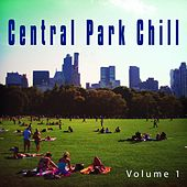 Central Park Chill, Vol. 1 (New York City Laid Back Tunes) by Various Artists
