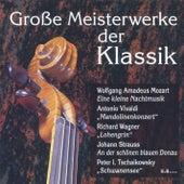 Grosse Meisterwerke der Klassik by Various Artists