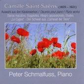 Camille Saint-Saëns: Camille Saint-Saëns by Peter Schmalfuss