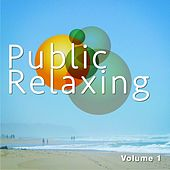 Public Relaxing, Vol. 1 (Chill out & Entspannung) by Various Artists