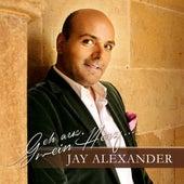 Geh aus, mein Herz (Jay Alexander singt die schönsten Kirchenlieder) by Various Artists