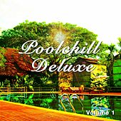Poolchill Deluxe, Vol. 1 (Holiday Relax and Sun Tunes) by Various Artists