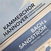 Bach & Sandström: Motets by Kammerchor Hannover