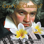 Can You Classics? Play Songs of Beethoven – Learn to Play Piano with Famous Composer, Deliberate Practice, Classical Music Lessons, Active Listening, Talent Development by Hard Work Academy