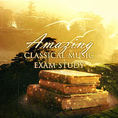 Amazing Classical Music: Exam Study – Brain Music, Songs for Studying, Reading, Concentrating & Mental Focus, Stress Relief by Brain Music Guru