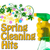 Spring Cleaning Hits, Vol.4 by Various Artists