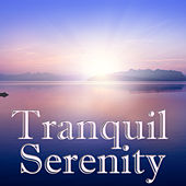 Tranquil Serenity, Vol.4 by Spirit