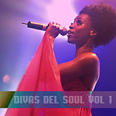 Divas del Soul Vol. 1 by Various Artists