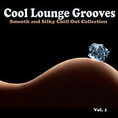 Cool Lounge Grooves, Vol. 1 - Smooth and Silky Chill Out Collection by Various Artists