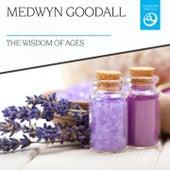 The Wisdom of Ages by Medwyn Goodall