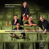 Schubert (Re)inventions by Various Artists