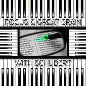 Focus & Great Brain with Schubert – Brainstorm, Classical Music for Deep Concentration, Logical Thinking, Exam Study Music, Increase Brain Power, Mindfulness, Study Skills by Focus Music Company