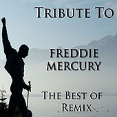 Freddy Mercury Medley: A Kind of Magic / Another One Bites the Dust / Friends Will Be Friends / I Want It All / I Want to Break Free / Living on My Own / Radio Ga Ga / The Show Must Go On / The Great Pretender / These Are the Days of our Lives / We Are th by Disco Fever