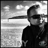 Destiny by Emilio
