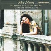 Sole e Amore - The Songs of Verdi, Puccini, Donizetti by Michael Pollock