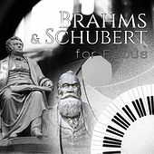 Brahms & Schubert for Focus – Study Music Collection, Exam Study Music, Concentration and Mind Power, Relaxing Piano, Music to Increase Brain Power, Effective Learning by Focus Music Consord