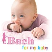 Bach For My Baby by Various Artists