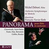 Michel Debost: Panorama by Various Artists