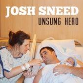 Unsung Hero by Josh Sneed