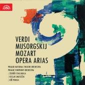 Verdi, Mussorgsky, Mozart:  Opera Arias by Various Artists