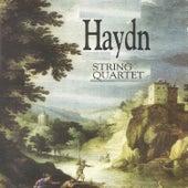 Haydn - String Quartet by Orquesta Lírica de Barcelona