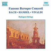 Famous Baroque Concerti by Various Artists