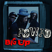 Big Up by Aswad