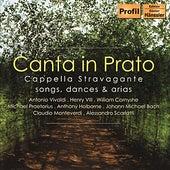 CAPPELLA STRAVAGANTE: Canta in Prato von Christian Hagitte