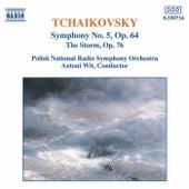 Symphony No. 5 / The Storm by Pyotr Ilyich Tchaikovsky
