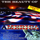 The Beauty Of America by David & The High Spirit
