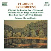 Clarinet Evergreens by Various Artists