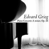 Edvard Grieg: Piano Concerto A minor, Op. 16 by Radio-Sinfonieorchester Warschau