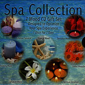 Spa Collection - Global Melodies Vol. 6 by David & The High Spirit