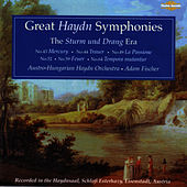 Great Haydn Symphonies - The Sturm Und Drang Era by Austro-Hungarian Haydn Orchestra