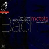 Bach: Six Motets by Nederlands Kamerkoor