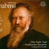 Johannes Brahms: Das gesamte geistliche Werke für Chor und Orgel by Jörg Straube Norddeutscher Figuralchor