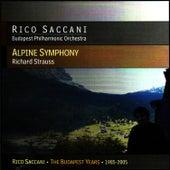 Strauss: Alpine Symphony by Rico Saccani