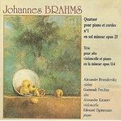 Brahms: Quatuor pour piano et cordes No. 1 & Trio pour alto, violoncelle et piano opus 114 by Quatuor Brussilovsky