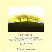 Schubert: Sonata per a piano en si bemoll D. 960, Impromptus by Joan Amils