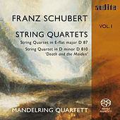 Franz  Schubert: String Quartets Vol. I by Mandelring Quartett