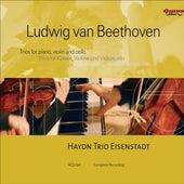 BEETHOVEN, L.: Piano Trios (Complete) (Eisenstadt Haydn Trio) by Eisenstadt Haydn Trio