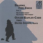 Brahms: Five Trios, Volume I by Golub Kaplan Carr Trio
