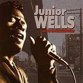 Best Of The Vanguard Years by Junior Wells