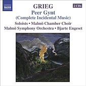 GRIEG, E.: Orchestral Music, Vol. 5 - Peer Gynt (complete incidental music) / Foran sydens kloster / Bergliot (Engeset) by Various Artists