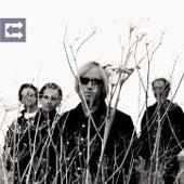 Echo by Tom Petty